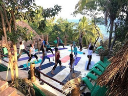 Mexico Yoga Retreat: meditation, hiking, great food, whales, dolphins!
