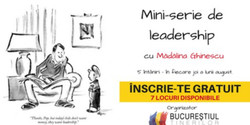 Mini-serie de leadership