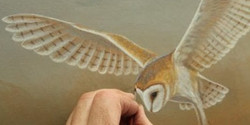 Naturaltreasures: The Best of British Wildlife in Art