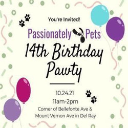 Passionately Pets' 14th Birthday Pawty