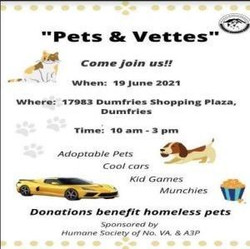 Pet And Vettes, 19 June 2021