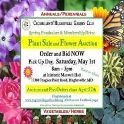 Plant Sale and Flower Auction, Crossroads of Hughesville Garden Club