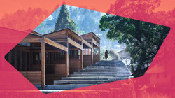 Rural Renaissance: Xu Tiantian