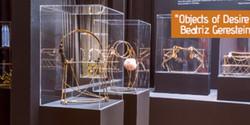 See you in Venice: Biennial Exhibition by Beatriz Gerenstein