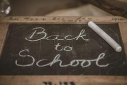 Somerset Patriots | RubberDucks v Patriots| Back to School Folders