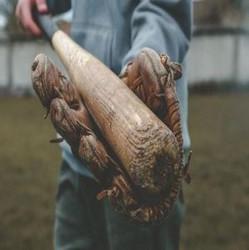 Somerset Patriots | Yard Goats v Patriots|Commemorative Wooden Bats and Unused Ticket Exchange