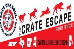 Sosarl Crate Escape: Journey to Rescue Virtual Challenge