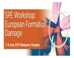 Spe Workshop: European Formation Damage