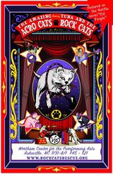 The Amazing Acro-cats Astound Asheville