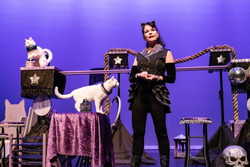 The Amazing Acro-cats Tumble into St. Pete