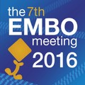 The Embo Meeting 2016