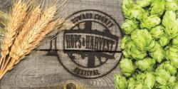 The Hops & Harvest Festival