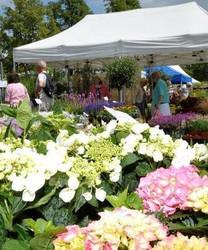 The Norfolk Garden Show 2021