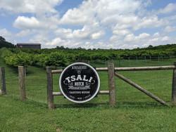 Tsali Notch Vineyard Bike, Bluegrass and Wine Tour