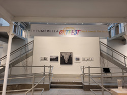 Umbrella Artfest Auction Exhibition