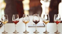 Wine Tasting 101 [November 5]
