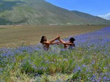 Yoga retreats and Holiday in Italy