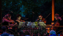 *online* Sunday Concerts: Hill Quartet