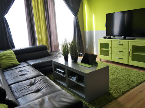 Antwerp very beautiful fully furnished apartment for expats! - Apartments