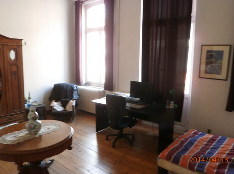 Bright, furnished studio near Av. Louise/ixelles/ Brussels - Apartments