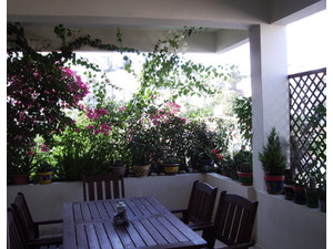 Rooms close to the University of Cyprus & the Cyprus Institu - Общо жилище