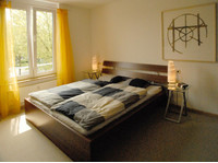 Weil /d • We rent from 1st June 2015 a modern two-room flat - Apartments