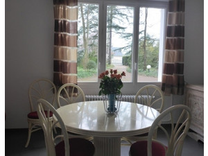 holidays rental Amboise loire valley - Сезонная аренда