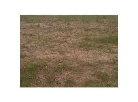 Registered Land For Sale at Prampram - Terrain