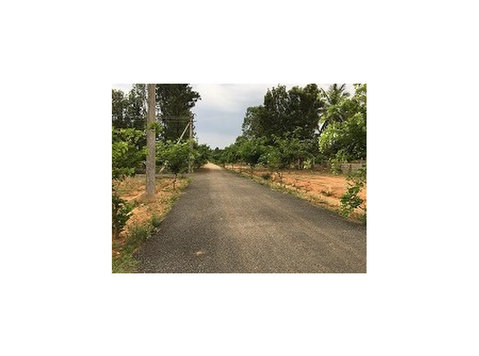 chikkajala near biaapa approved sites for sale price 2200/- - Οικόπεδα
