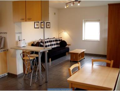 Fully Furnished 1-Bed Apt(d) - € 1100pm all incl, JULY 2019 - 公寓