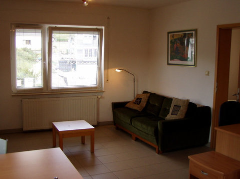 Fully Furnished 1-bed Apt(c) - € 1260 pm all incl, JAN 2021 - Lejligheder