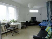 Lux-center Fully Furnished Studio 35m2 Avail. 1st September - Apartments