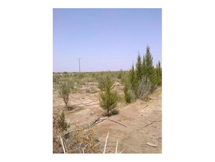 Vente terrain 130h région Sidi Bouatman - Terrain