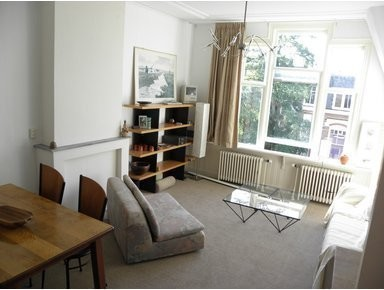 Large Bright Furn. Room + bedroom (all incl), Statenkwartier - Apartments