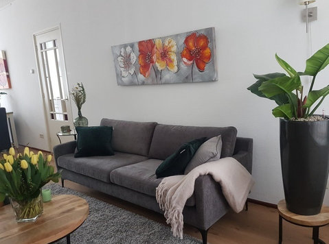 Statenkwartier: Modern fully furn 1 bed with garden - Apartments
