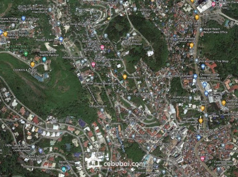 Commercial Lot For Sale in Salinas Drive Lahug, Cebu City - Land