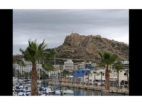 Avenida Óscar Esplá, Alicante : 1526299 - Flatshare