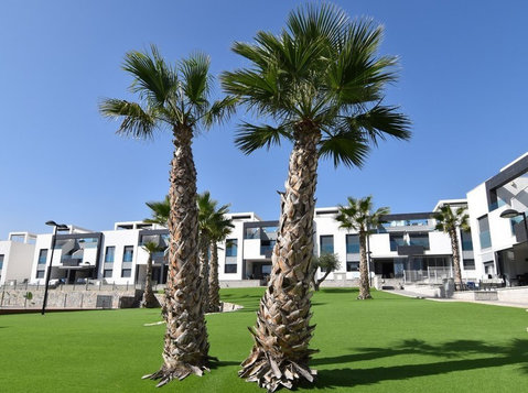 Oasis Beach VII, 2 bed GF Apartment, Punta Prima, Torrevieja - Houses