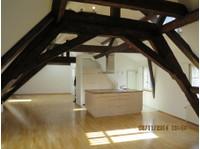 * Per Immediate!* Lovely Large Maisonette, Oldtown Basel - Apartments