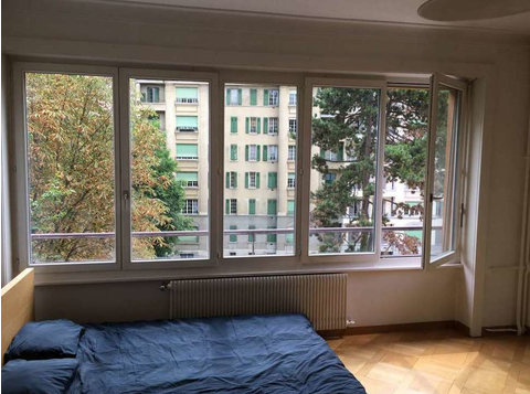 Affordable central bright flight in Geneva city center - Apartments
