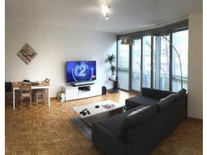 Big, Central and affordable flat in Geneva! - Apartmani