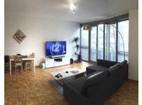 Big, Central and affordable flat in Geneva!