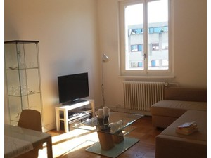 Stunning apartment in Carouge in 6th floor - Byty