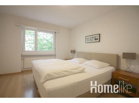 2 Room Apartment in Zürich Center - Διαμερίσματα