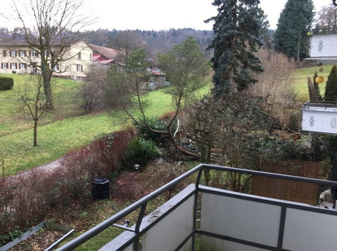 Beautiful flat in Zurich close to nature and city center - Apartmani