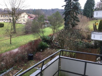 Beautiful flat in Zurich close to nature and city center