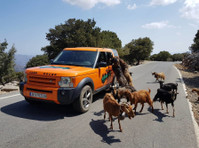 Driver / Guide for exclusive Mountain Safari Company Elounda (3) - Tourism & Hospitality: Other