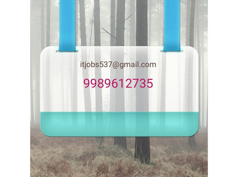Backdoor Jobs Hyderabad - 정보기술