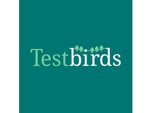 Test User for Apps and Websites - Web design