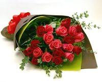 samara fleur